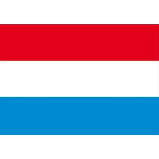 Gastlandflagge 30 x 45