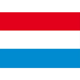 Gastlandflagge 20 x 30